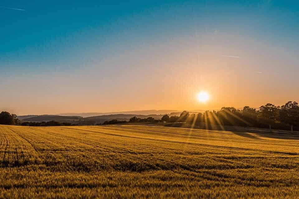 農地貸款是什麼?